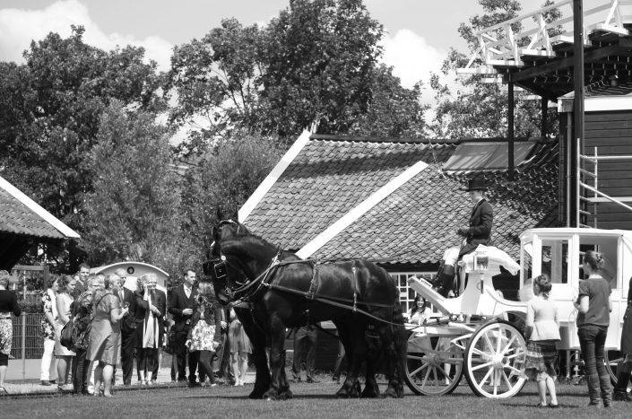 Pieter en Frederique's bruiloft bij Molen de Ster